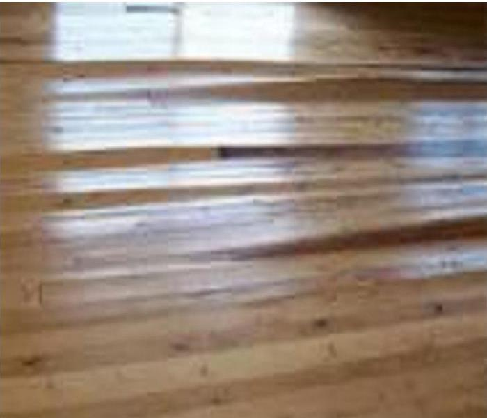 Water Damage My dishwasher leaked all over my hardwood floors