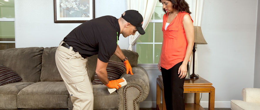 Franklin, WI carpet upholstery cleaning